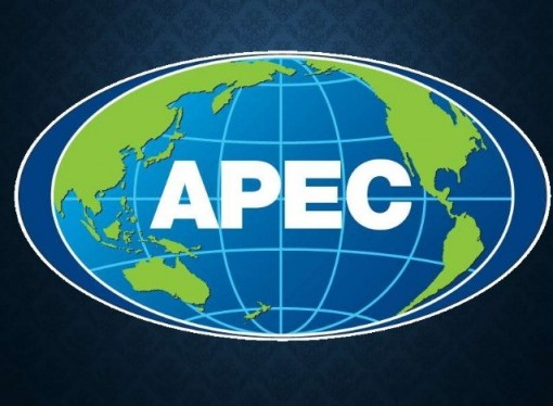 APEC 2017 to turn challenges into driving force