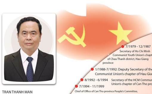 Member of 12th Party Central Committee Secretariat Tran Thanh Man