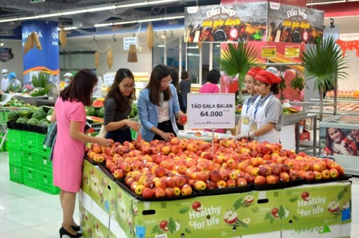 Can Tho earns more than 451 million USD from retail, services in August