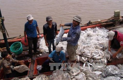 Seafood byproducts add value to fishery industry